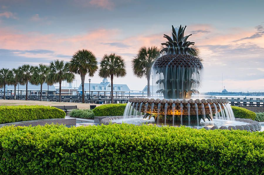 Charleston South Carolina Downtown Waterfront Park Pineapple
