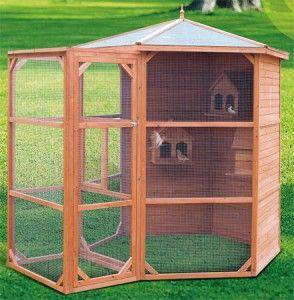 Comment aménager son jardin pour les oiseaux ? Mangeoire, cabane à ...