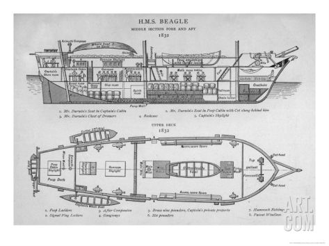 Hms Beagle Charles Darwin S Research Ship Giclee Print By R T