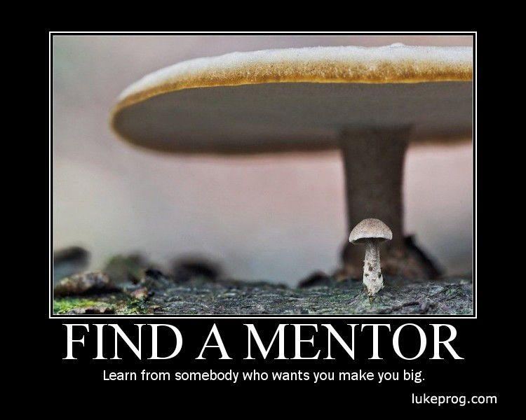 mentor mentee relationship love meme
