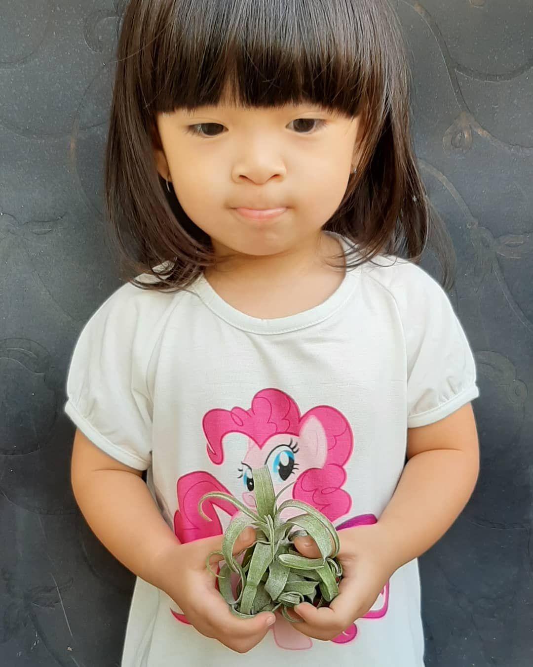 . . . . . #cutelittlegirls #tillandsiastreptophylla #tillandsia#airplants #trichomes#epiphyte #plantsofinstagram #plantsmakepeoplehappy #airplantsofinstagram #gardeningideas #urbangarden #tanamanudara #tanamanindoor #tillandsiaindonesia #tanamanunik #miniplants #tillandsiakarawang #tanamanhias #tanamanmasadepan
