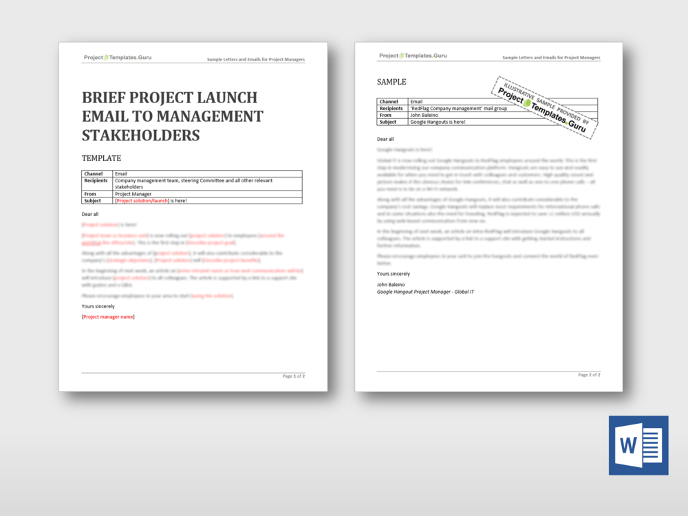 Check Out This New Brief Project Launch Email To Management