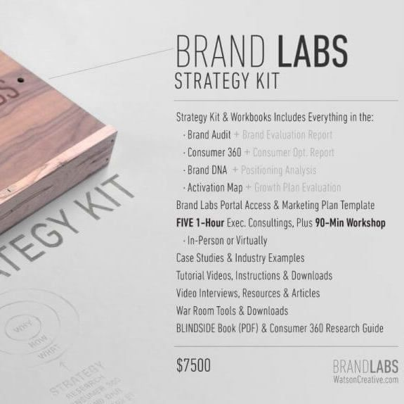 The brand strategy lab is a series of exercises processes the brand strategy lab is a series of exercises processes strategies and tools that youll independently work through at your own pace fandeluxe Choice Image