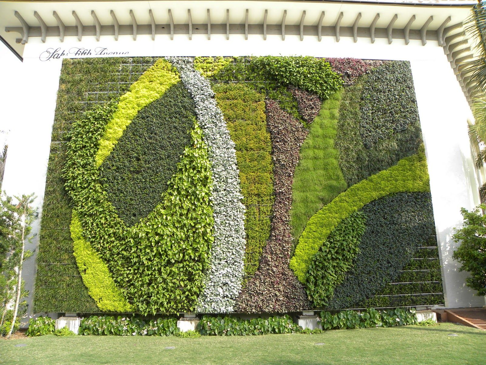 Living Wall At Saks Fifth Avenue On Worth Avenue In Palm Beach Photo By Anne Reeves Green