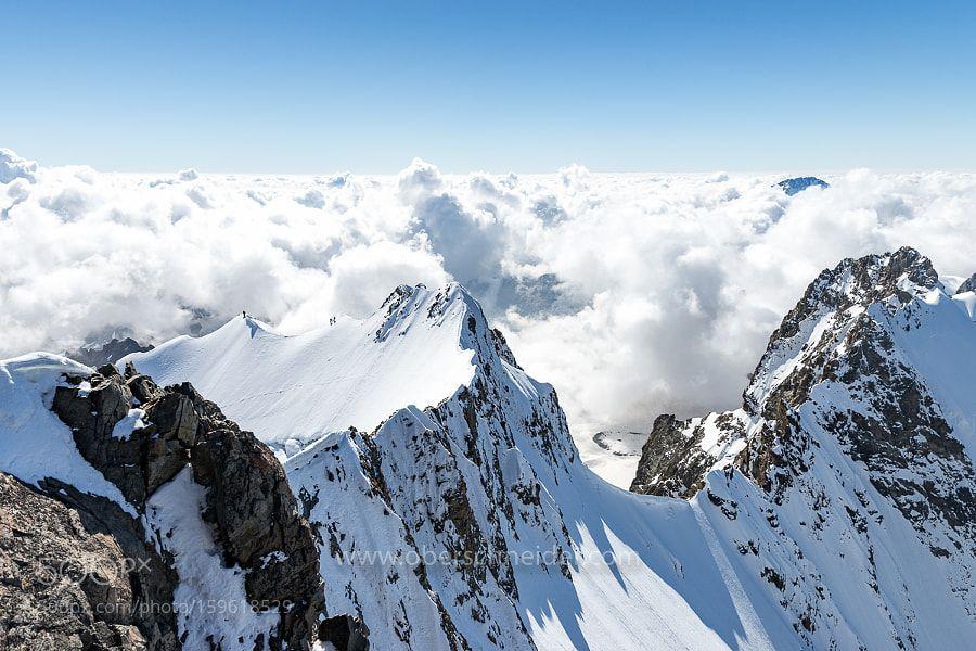 Alpinism on piz bernina piz bernina bernina natural