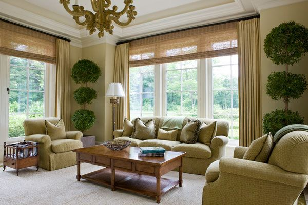 Impressive Topiary Plants To Livelier Decoration Wondrous Living Room Design With Green Sofas Window Treatments Living Room Living Room Windows Slc Interiors