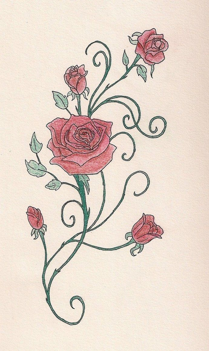 Rose Vine With Pastels By A Quily Tattoos Piercings Vine
