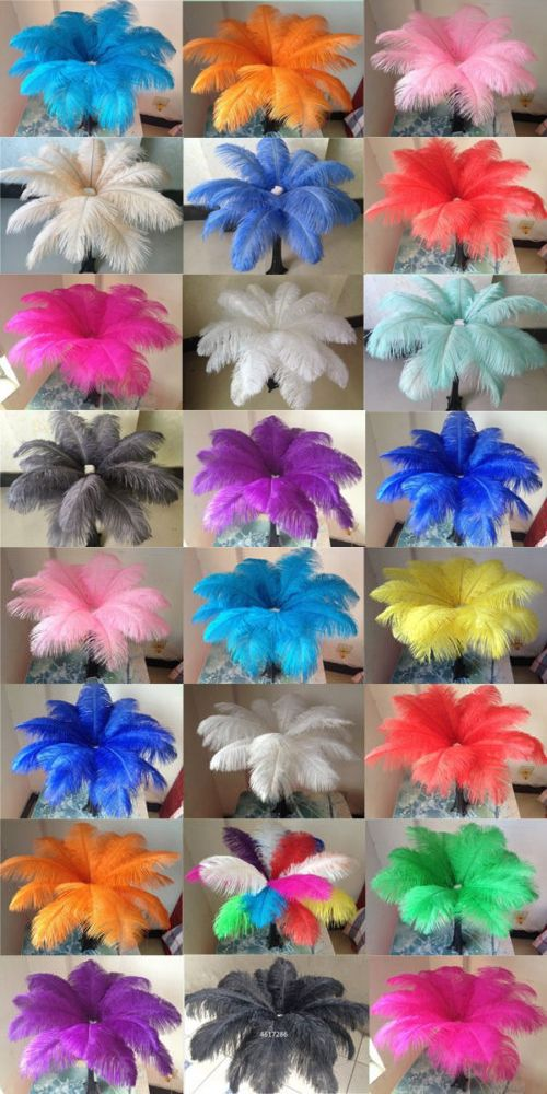 Wholesale 10-200 pcs high quality natural ostrich feathers 6-24 inch//15-60cm