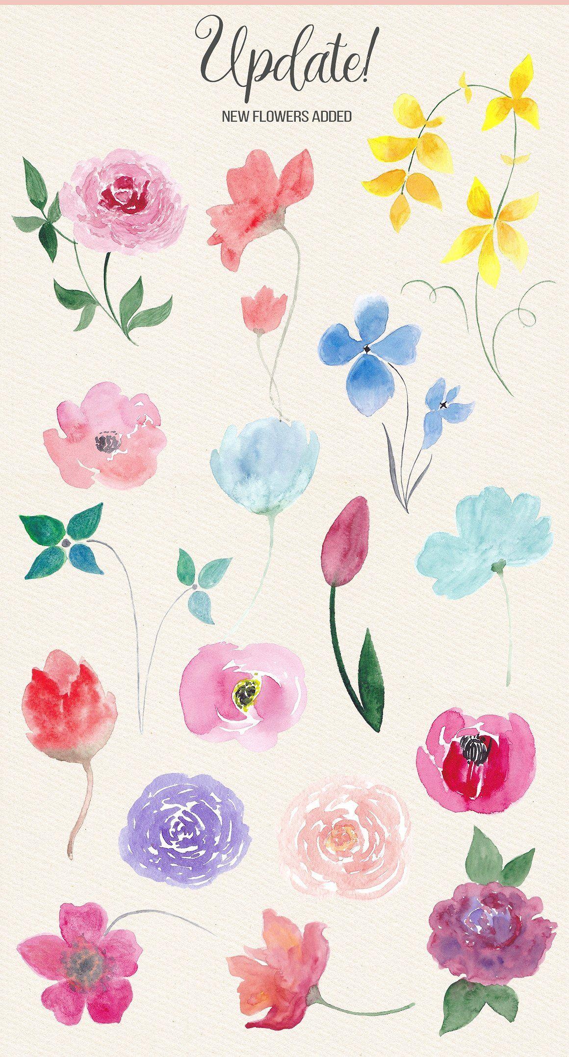 Watercolor Design Kit Watercolor Design Flower Drawing