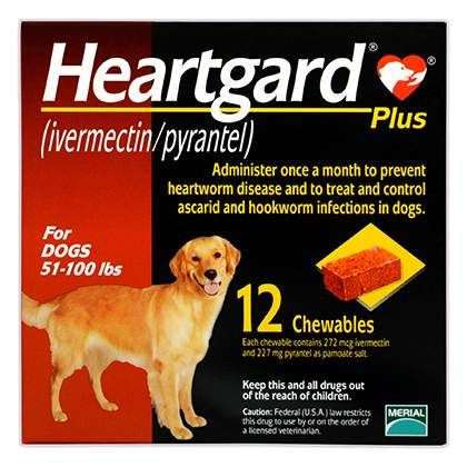 Heartgard Plus Chewables Hookworms In Dogs Pet Meds Dogs