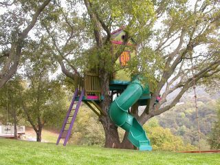 Barbara Butler-Treehouse.  Definitely need the slide.