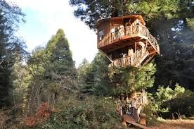 treehouse masters henry nelson inspiration