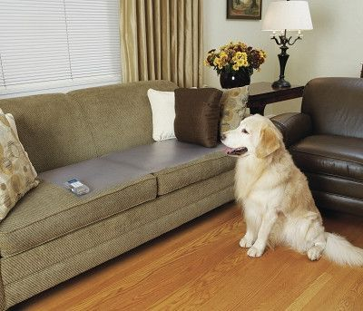 """DOG MAIL ORDER ITEMS (PACKAGE) - SCATMAT - LARGE, 48"""" x 20"""" - RADIO SYSTEMS CORP. (PET SAFE) - UPC: 59463001512 - DEPT: DOG PRODUCTS"""