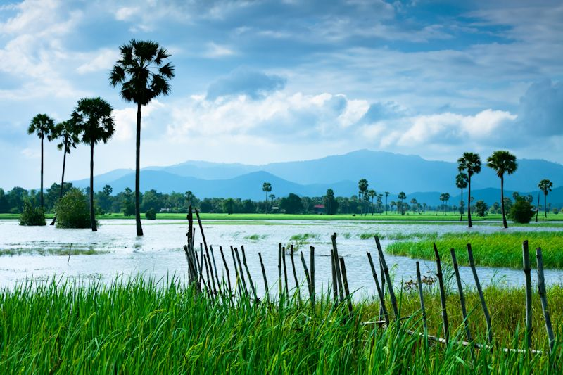 Image result for Beautiful Cambodian Landscape