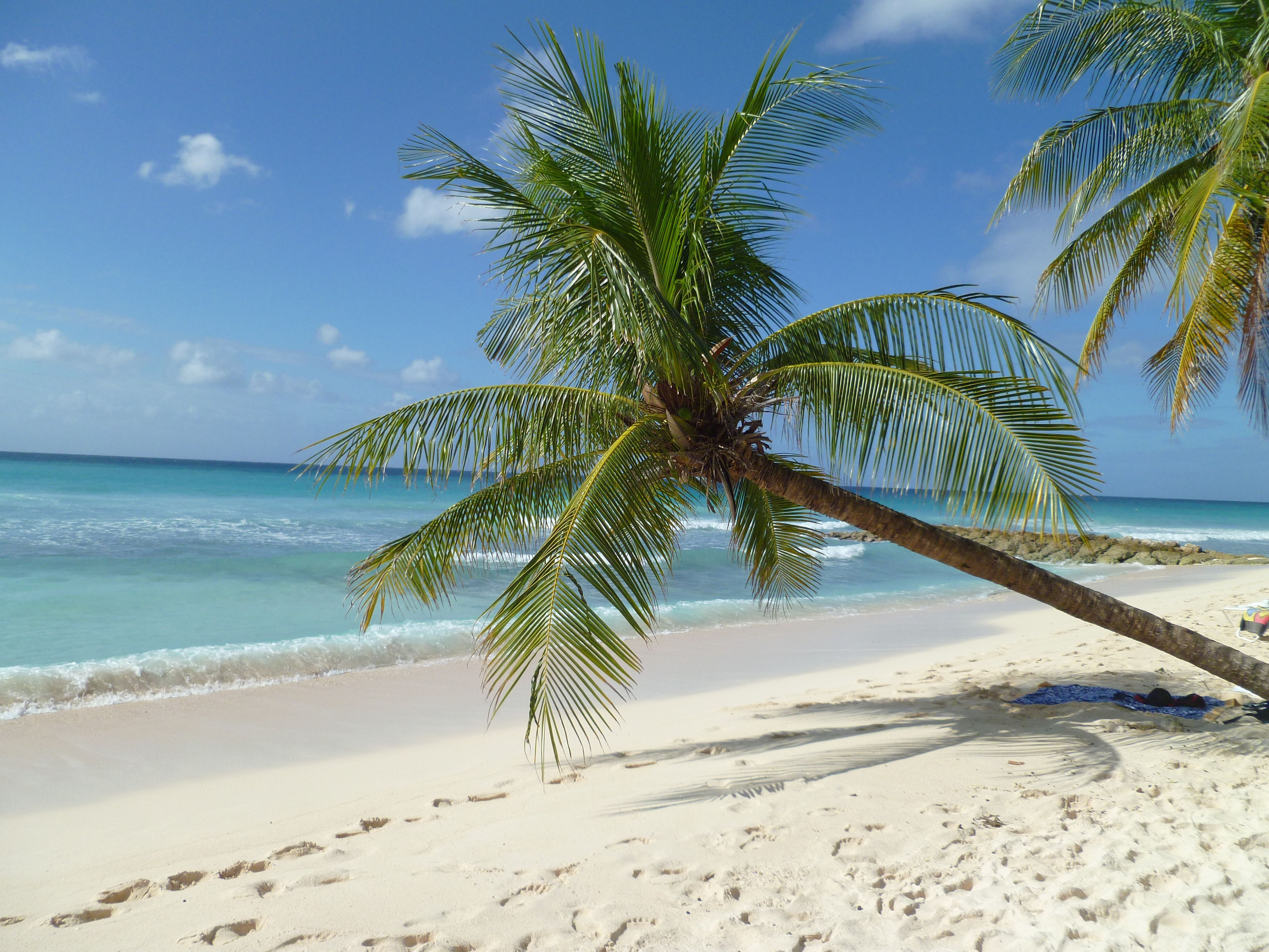 50 Best Beautiful Barbados Images On Pinterest: Favorite Places & Spaces