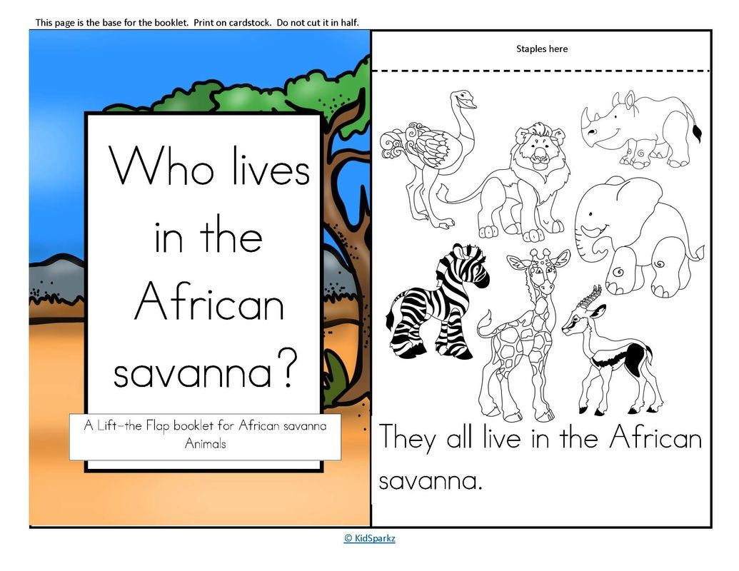 A Lift The Flap Booklet For An African Savanna Animals Theme Unit
