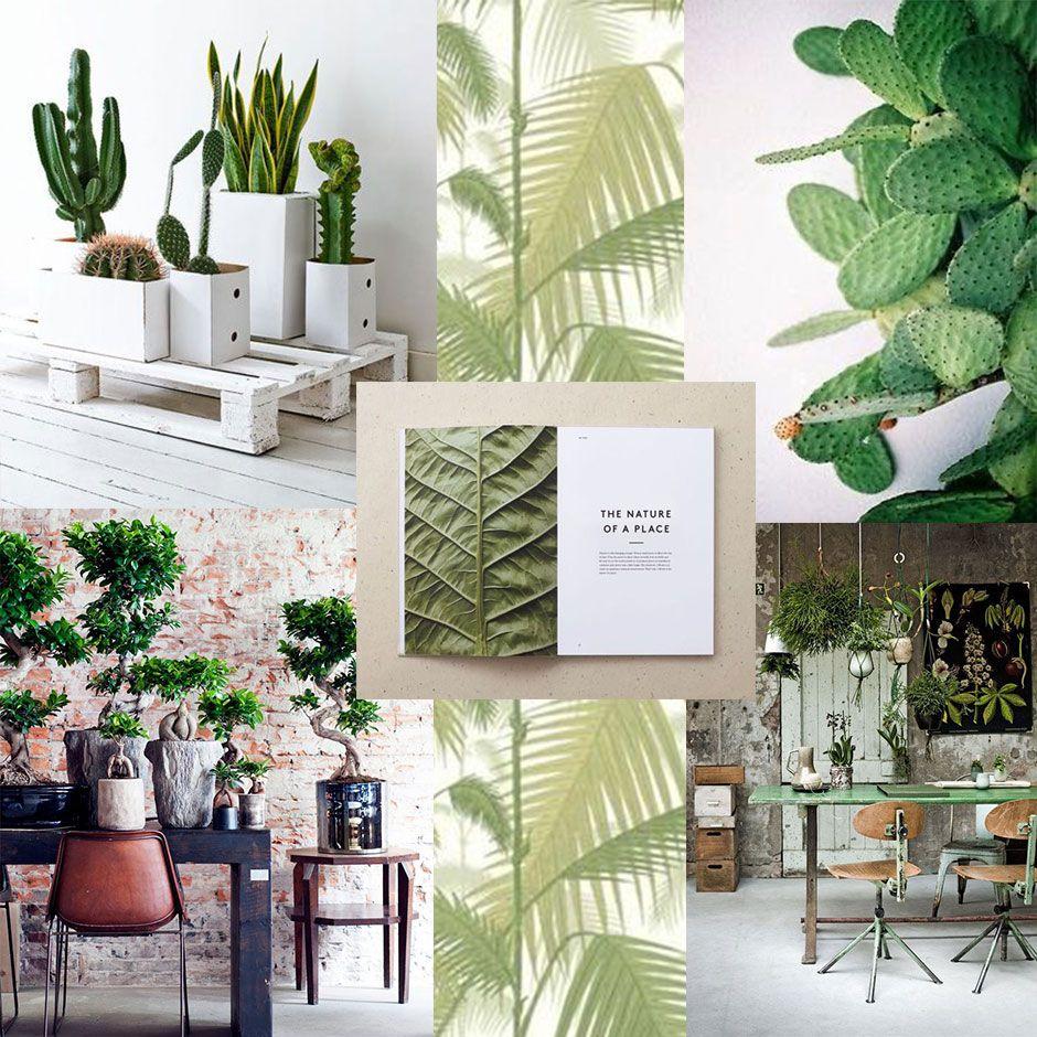Jungle green moldboard