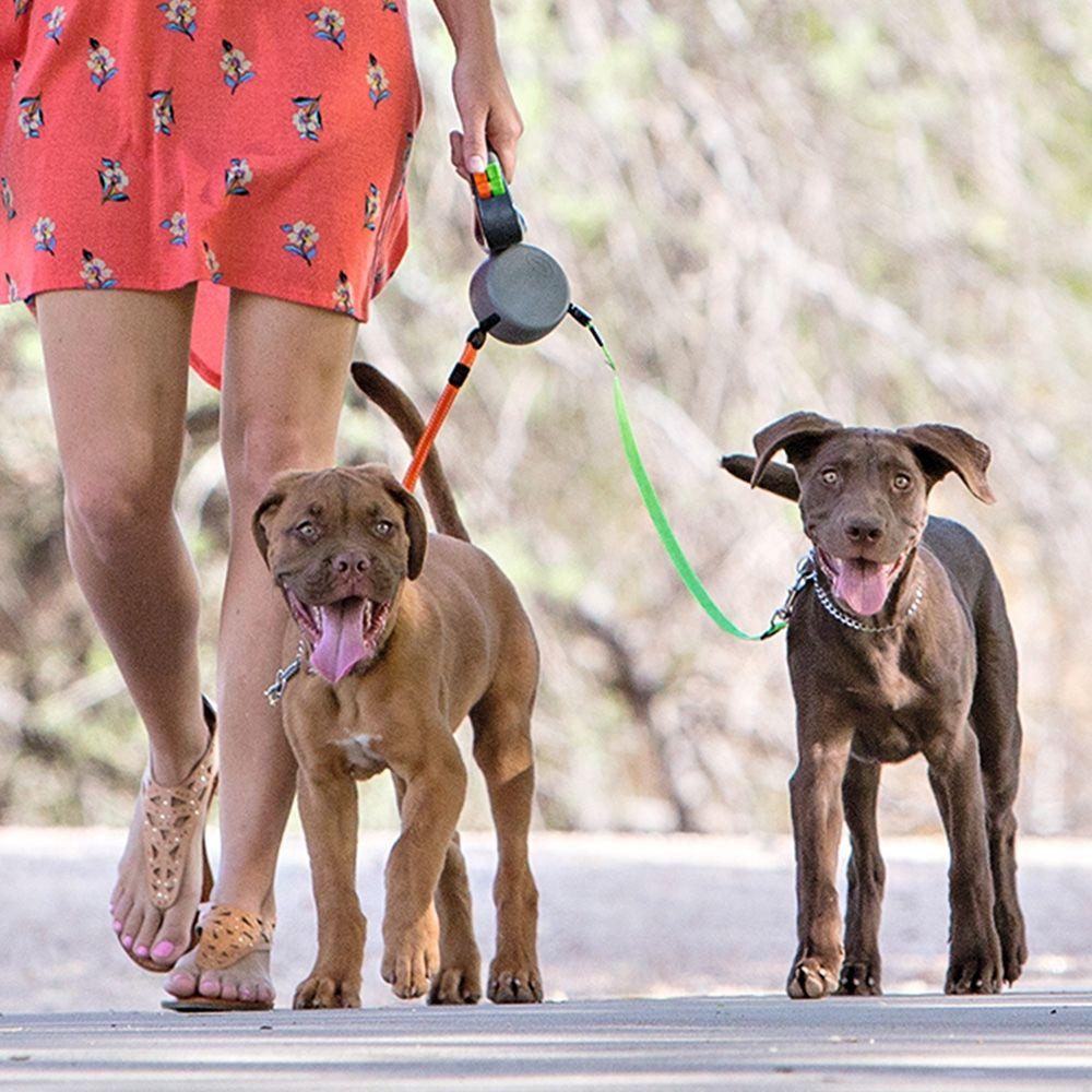 Nika Die Geniale Doppelte Hundeleine Hunde Hundeleine Haustiere