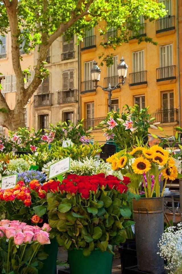 Flores no mercado de Aix-en-Provence, França #FlowerMarkets #France #Travel #MarketDay