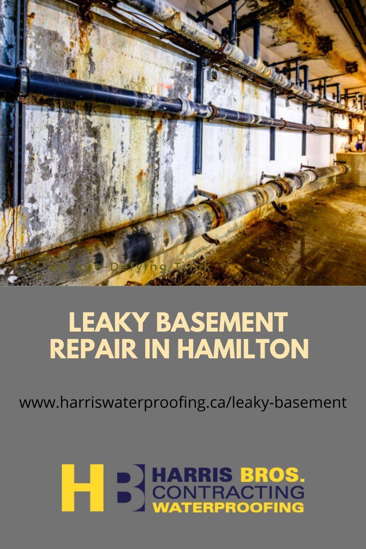 Leaky Basement In Hamilton In 2020 Leaky Basement Basement Repair Basement