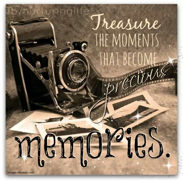Treasure The Moments That Become Precious Memories In This Moment Memories Treasure Quotes