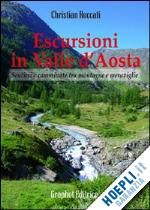 Roccati Christian - Escursioni in Valle d'Aosta . Sentieri e camminate tra montagne e meraviglie