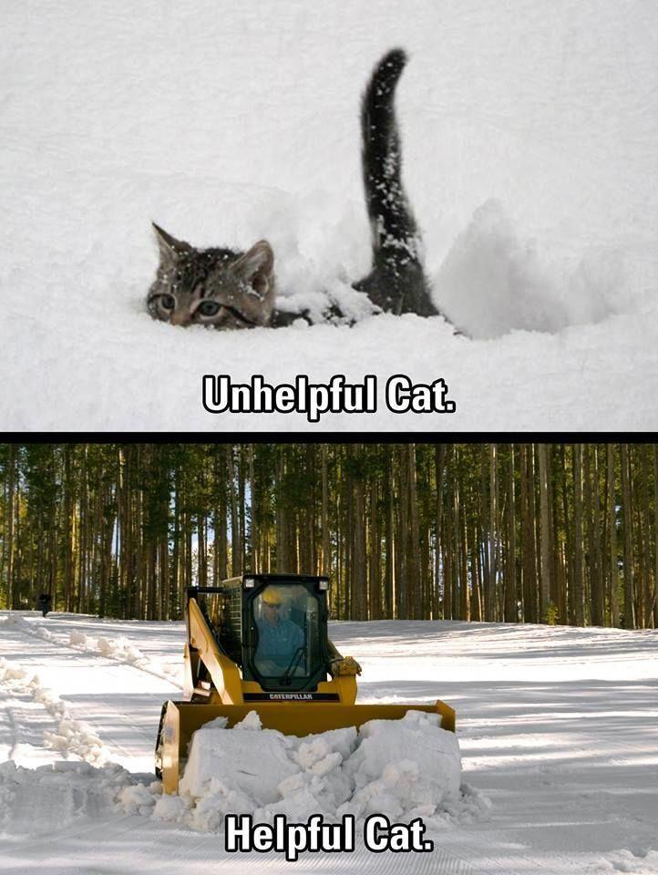 Anyone getting snow snow snowplow skidsteers cat