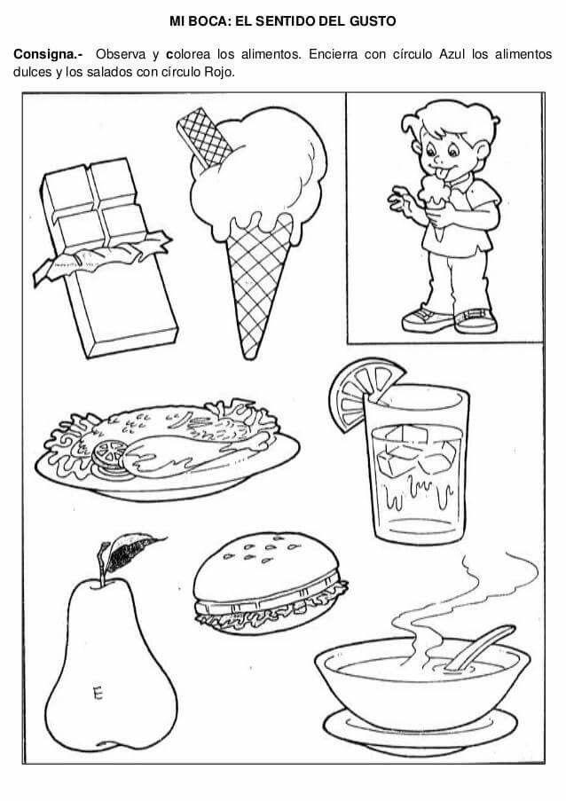 Los Cincos Sentidos Activity Sheets For Kids Senses Preschool Senses Activities