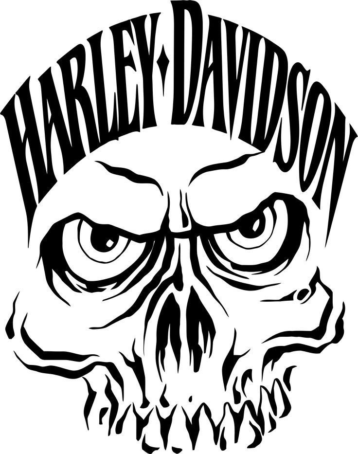 Best Useful Ideas: Harley Davidson Baggers Girls harley