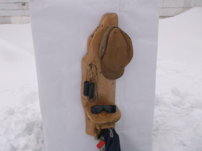Driftwood Shelf and Coat hooks hat