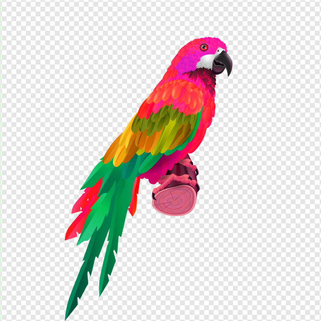 Colorful Parrot, Bird Cage, Love Birds, Flying Bird PNG Transparent