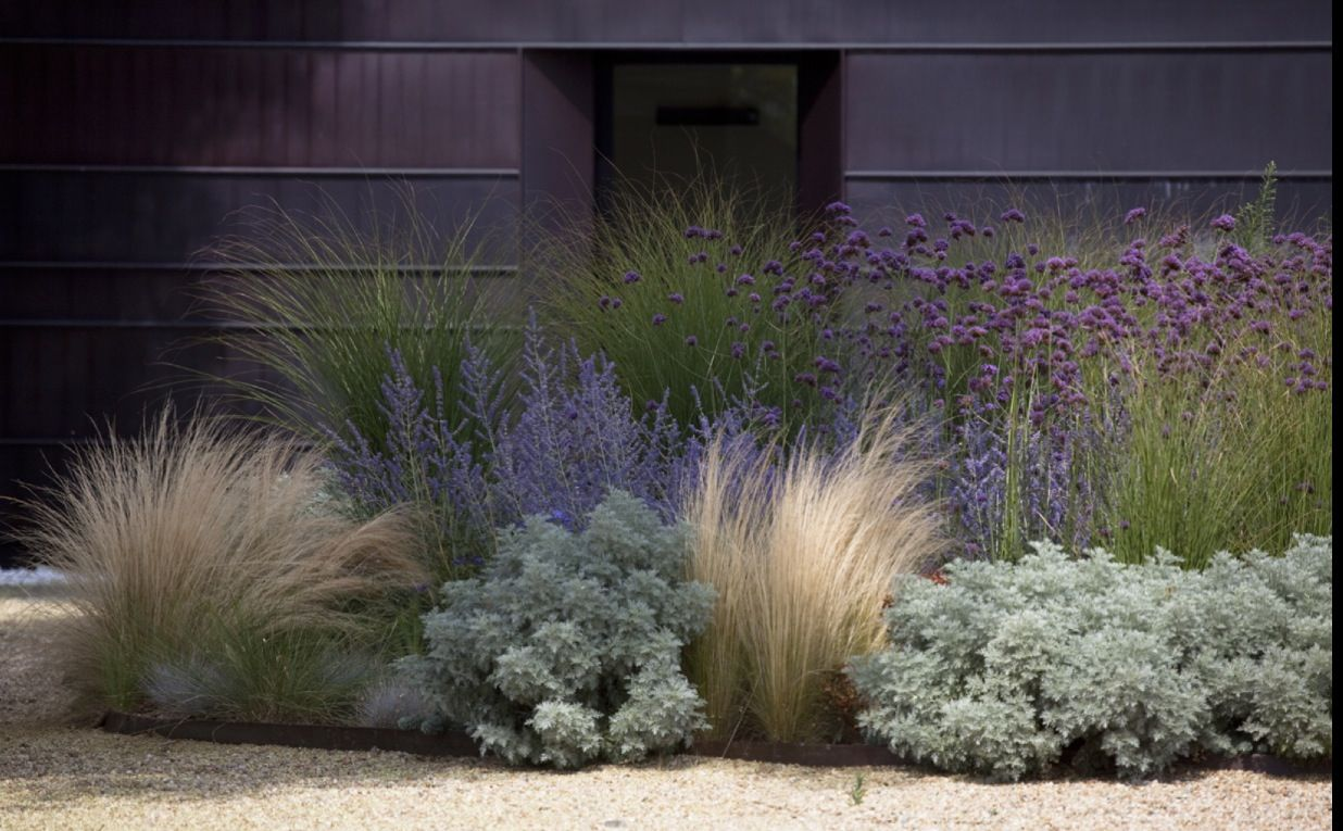 Image result for hotel in the environs of asti-ornamental grasses and sage