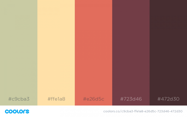 Aesthetic Color Schemes With Hex Codes