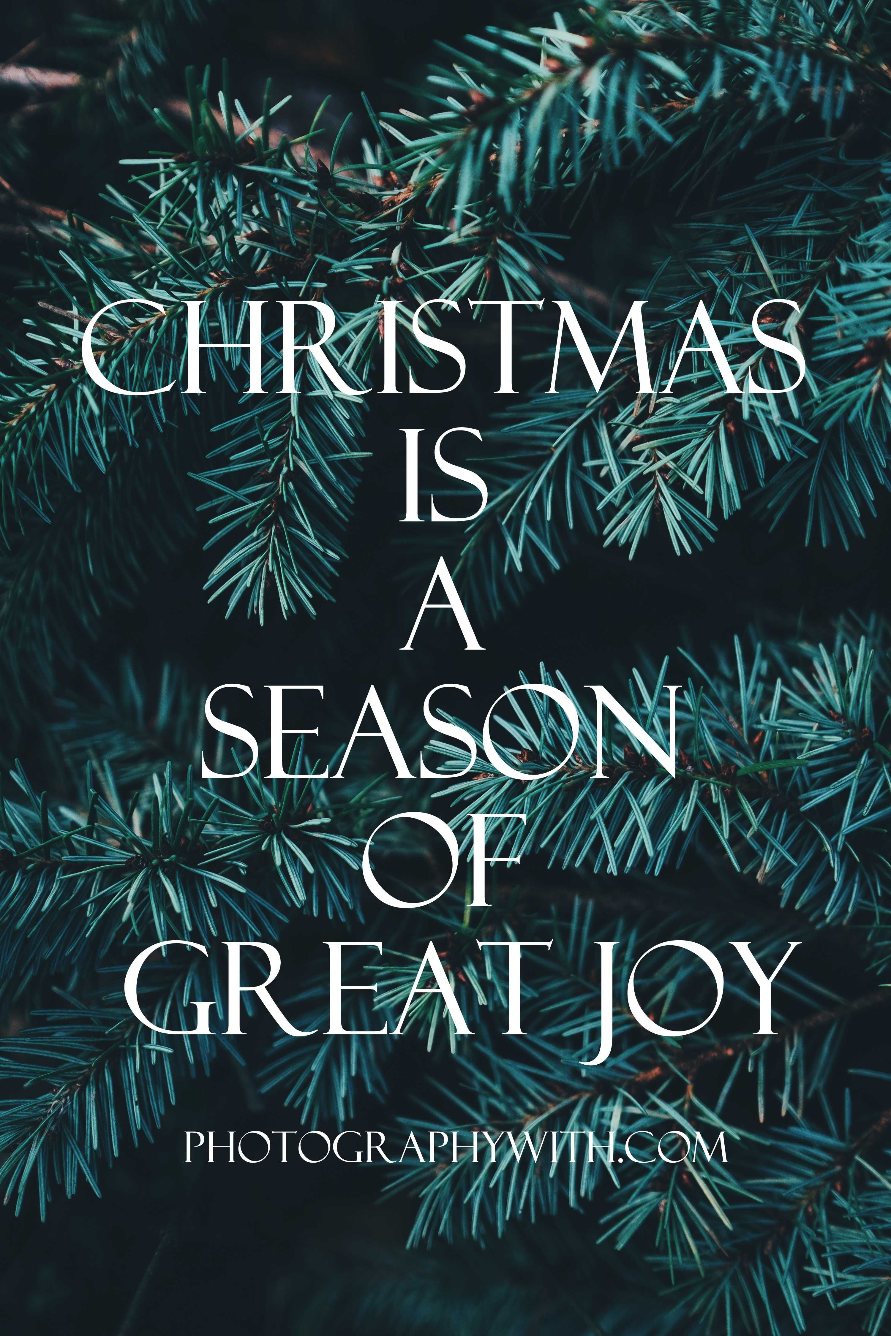 If You Are Looking For Best Christmas Greetings Messageso Here Is