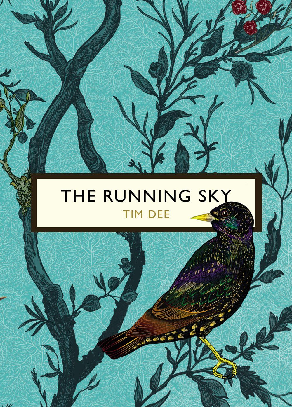 The Running Sky, Tim Dee, Timorous Beasties