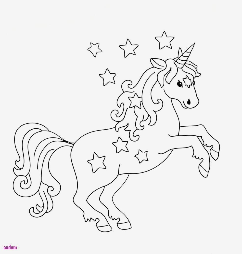 Einhorn Malvorlage Kinder Verschiedene Bilder Farben Malvorlagen Zum Ausdrucken Einhorn Cool Einhorn Au Unicorn Coloring Pages Coloring Pages Coloring Pictures