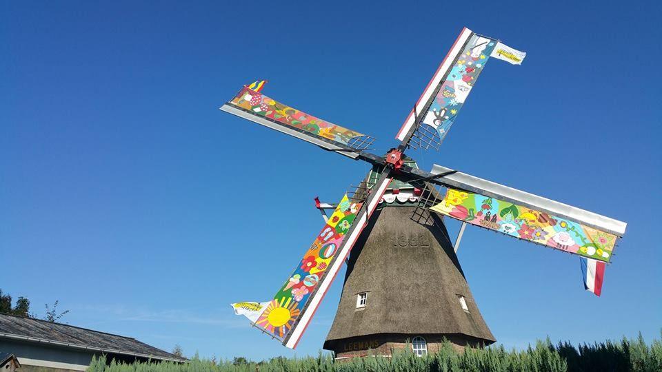 De Leemansmolen Vriezenveen met de beschilderde molenzeilen, gemaakt ter ere van het 150-jarig jubileum.