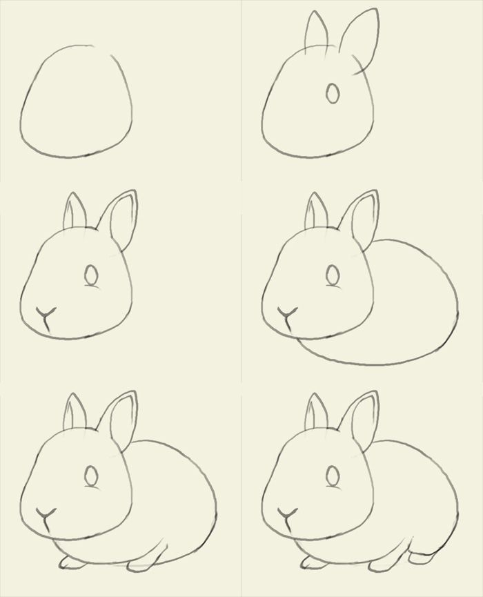 how to draw a bunny | Coloring and Drawing | Pinterest | Dessin ...