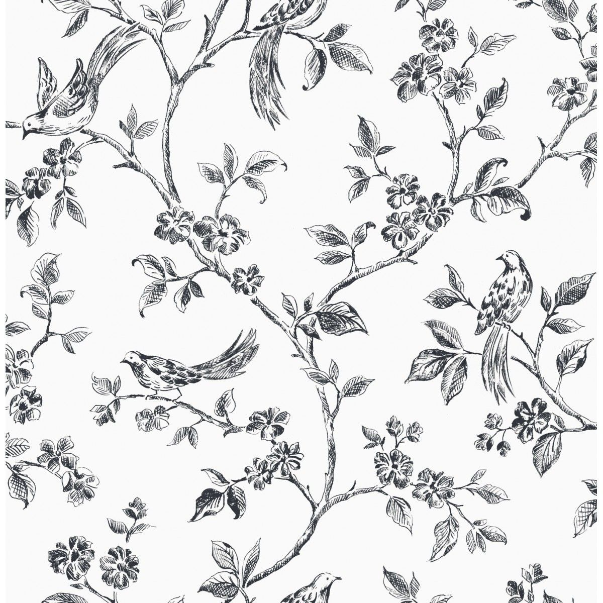 012 Floral Print Black & White Blue wallpapers, Bird