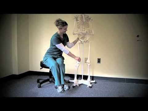 how to get into occupational health nursing