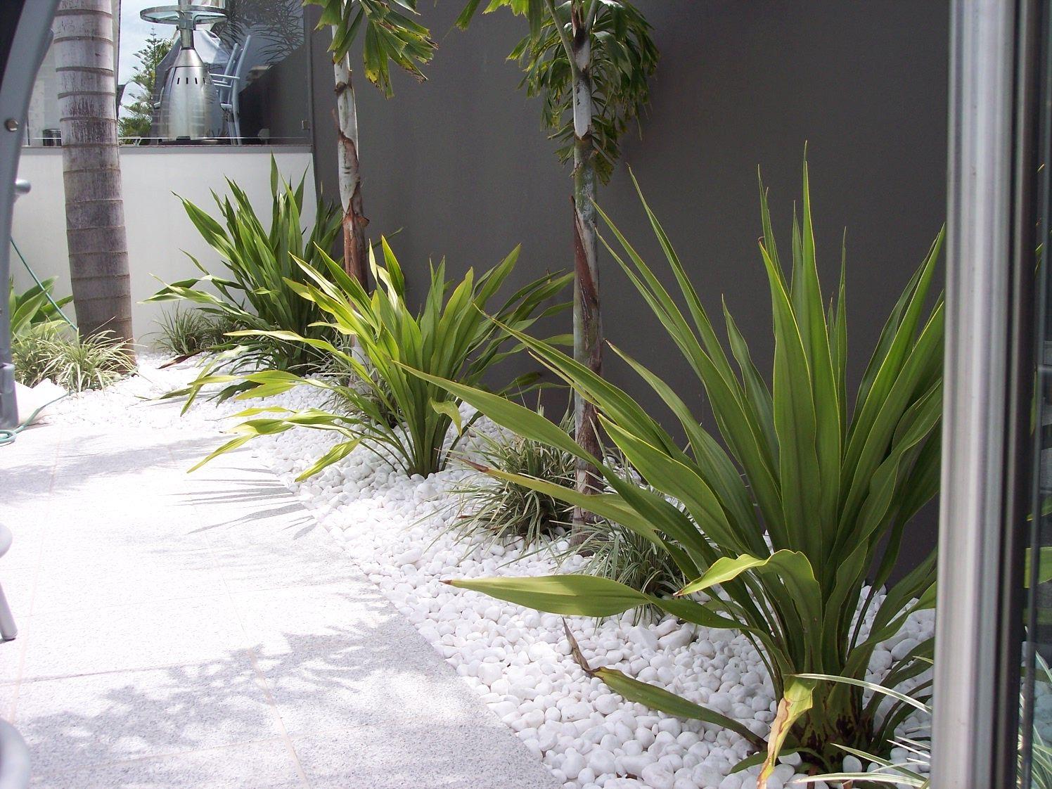 Snow White Pebbles | Exotic Garden Decor | Midyear Sale on now ...