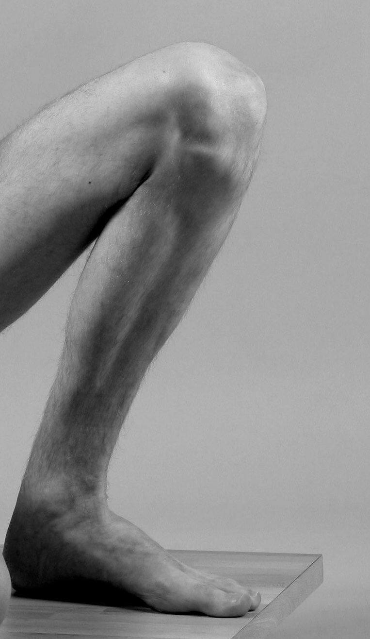 Bent knee leg anatomy reference pinterest leg anatomy bent knee ccuart Choice Image