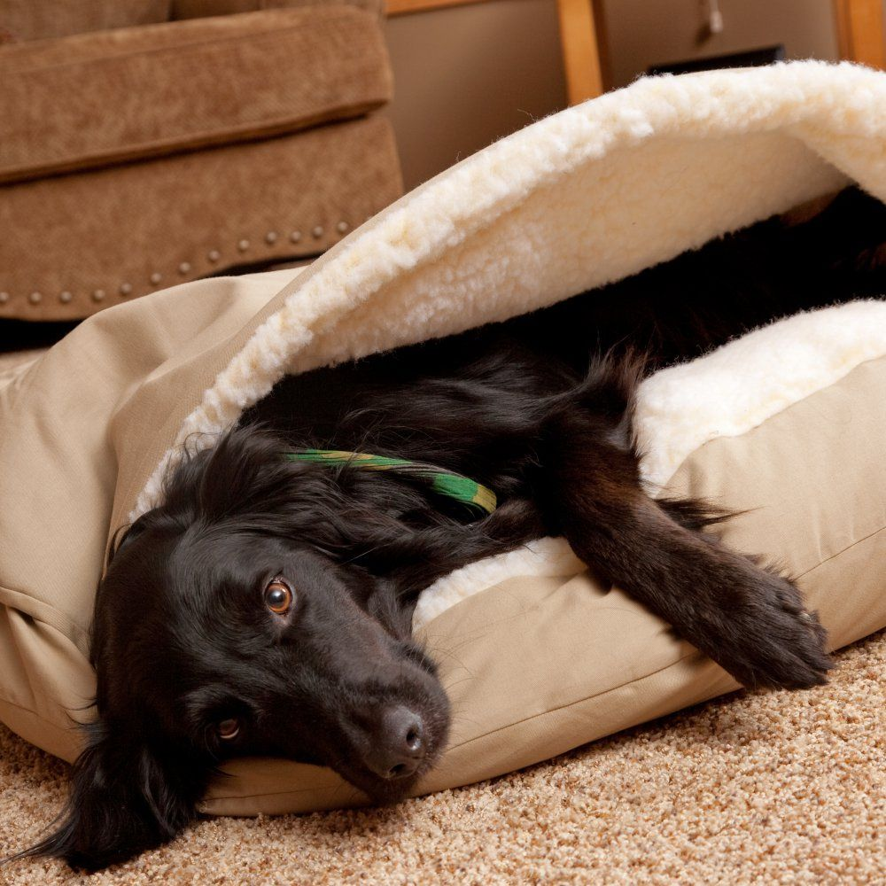 Snoozer Cozy Dog Cave The Snoozer Pets Poly Cotton Cozy Cave Pet Bed Has A Sherpa Lined Pocket Designed So That Al With Images Cozy Dog Bed Cozy Dog Dog Cave