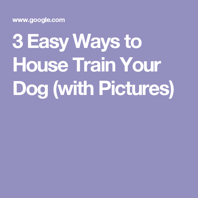 3 Easy Ways to House Train Your Dog (with Pictures)