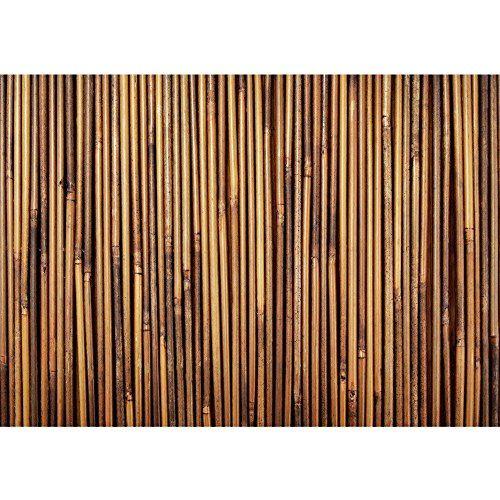 vlies fototapete premium plus wand foto tapete wand bild vliestapete bambus wald dschungel no