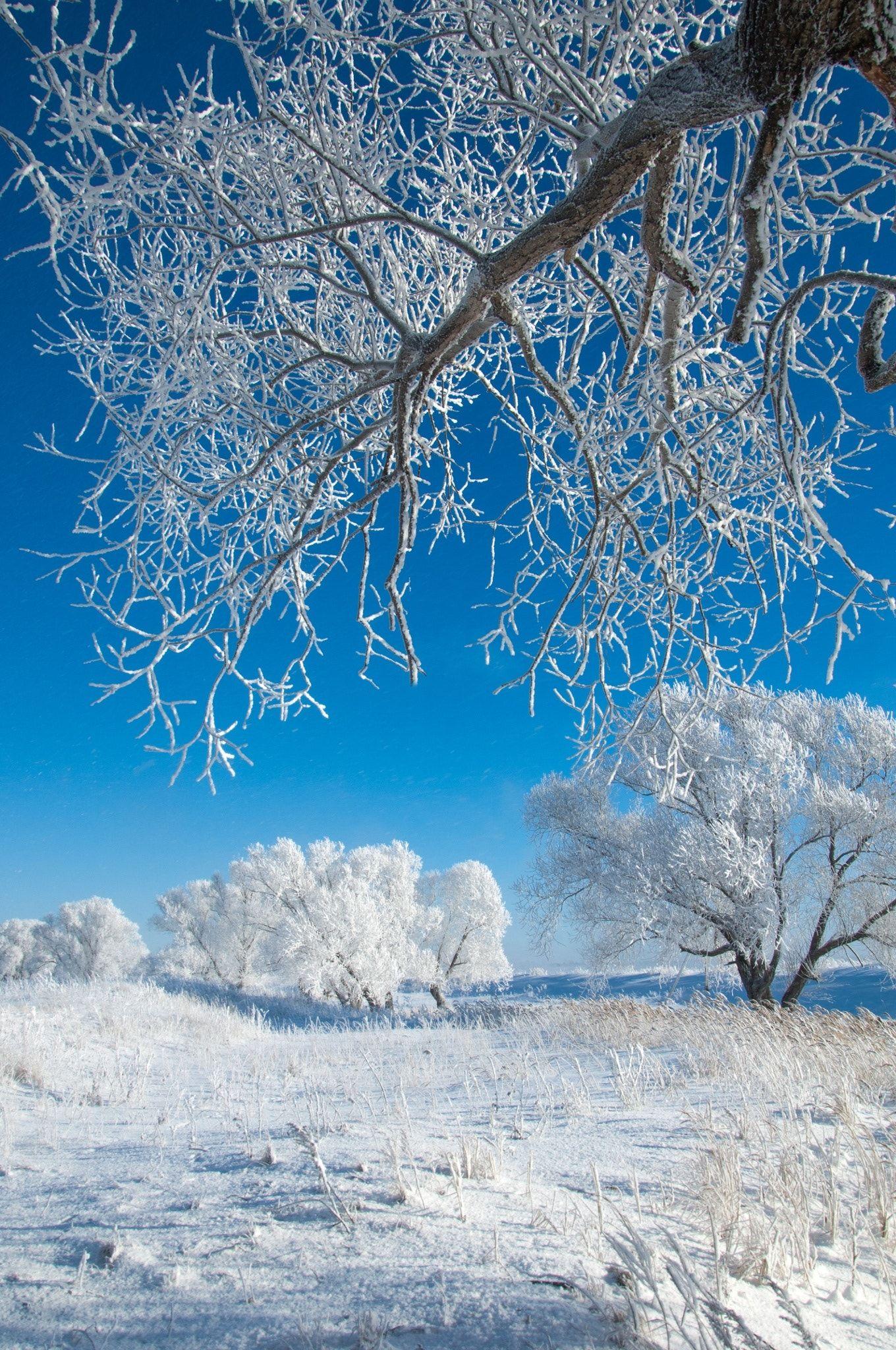 Winter Winter Tide Winter Time