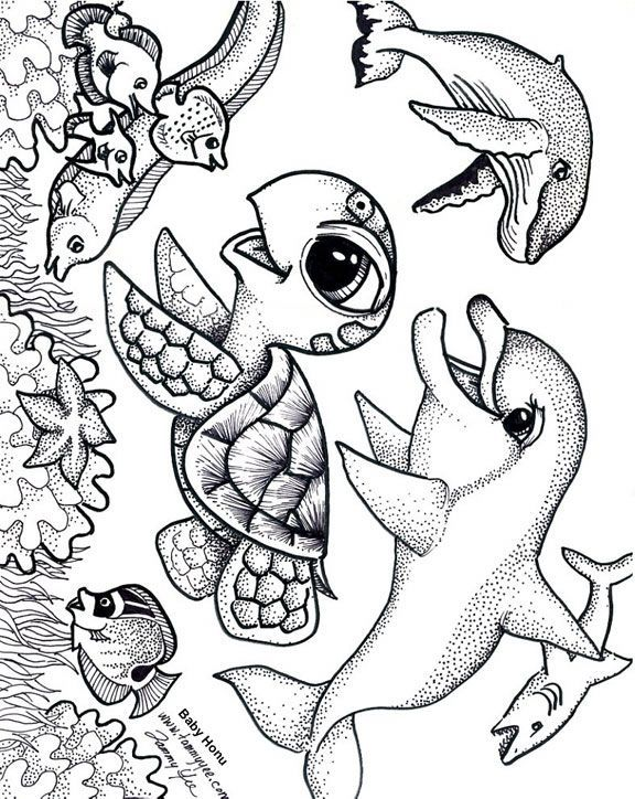 Baby Honu And Friends Coloring Page Cute Coloring Pages Detailed Coloring Pages Animal Coloring Pages