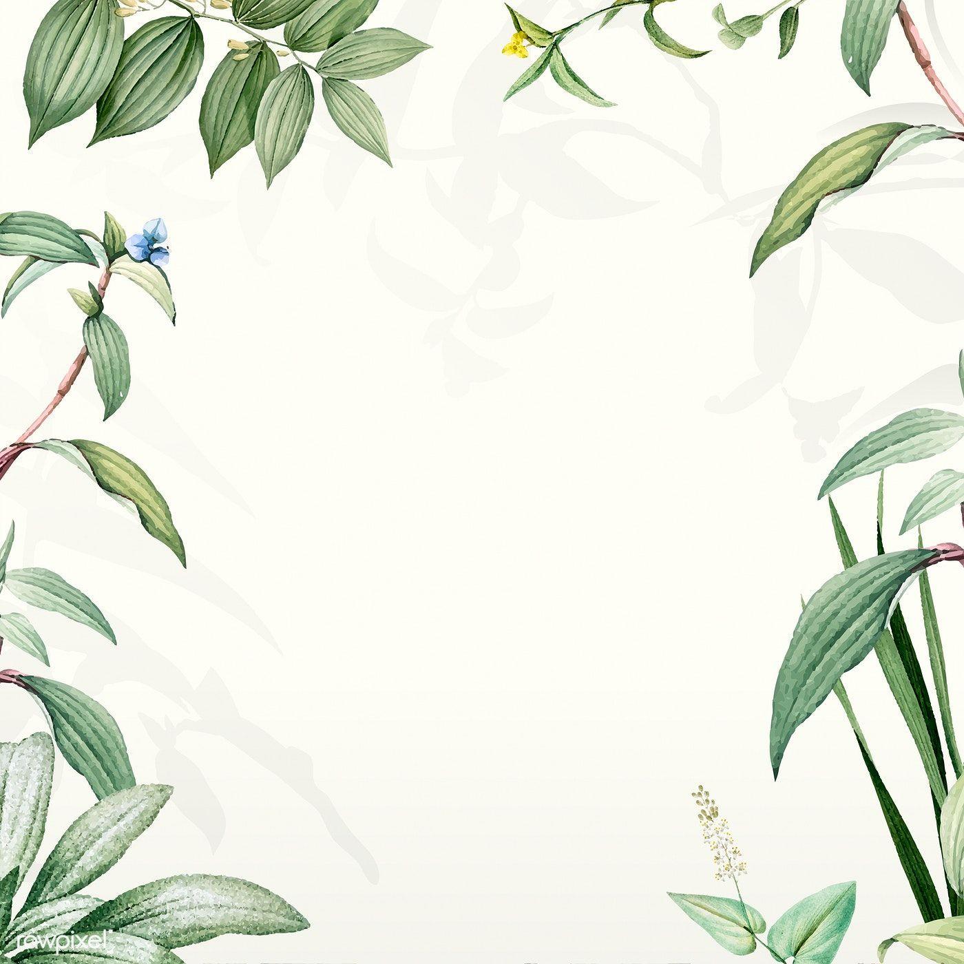 Download Premium Illustration Of Frame Of Green Leaves Design