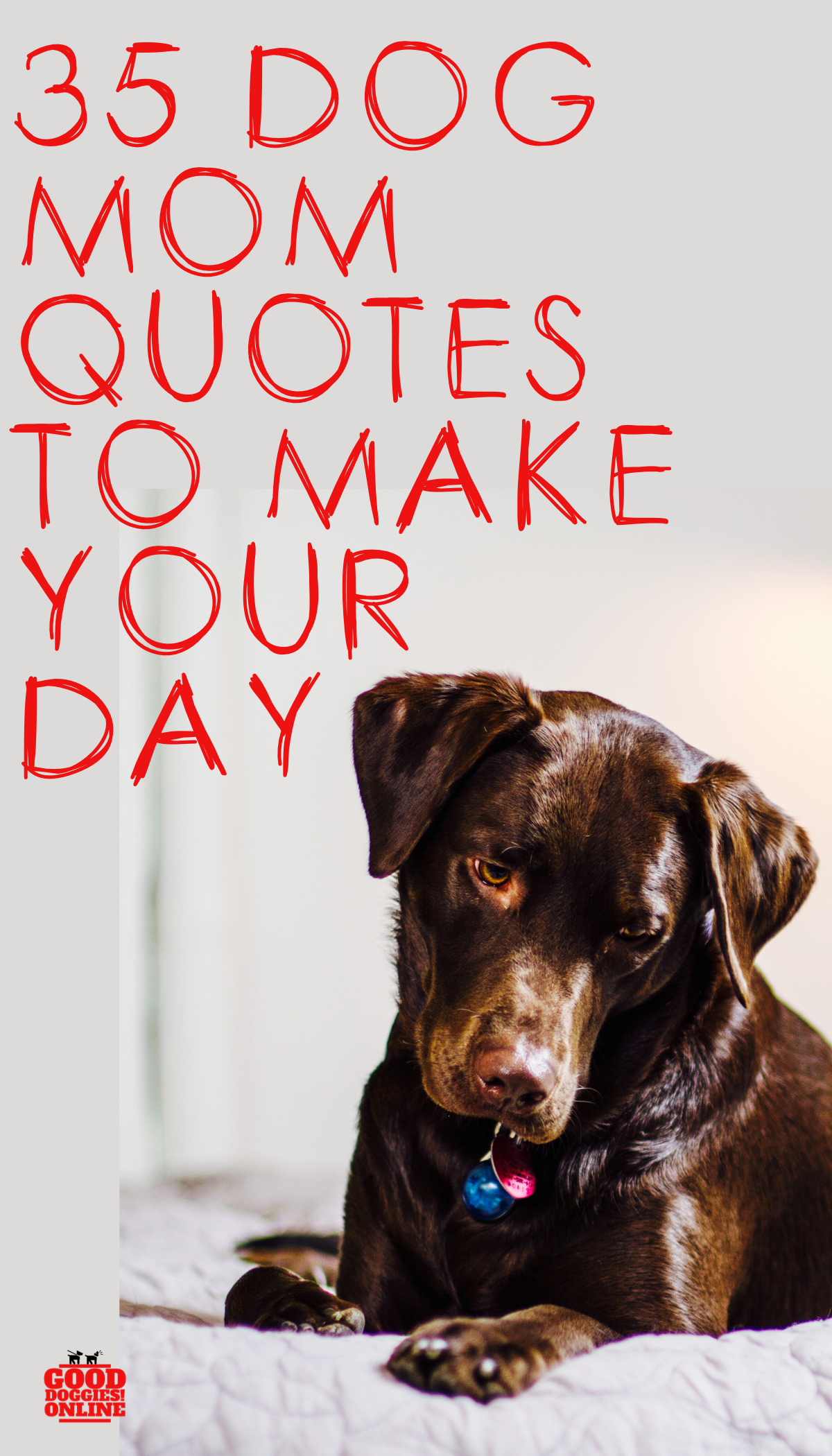 35 Best Dog Mom Quotes That Any Dog Parent Can Relate To Dog Mom Quotes Dog Owners Quotes Dog Quotes Funny