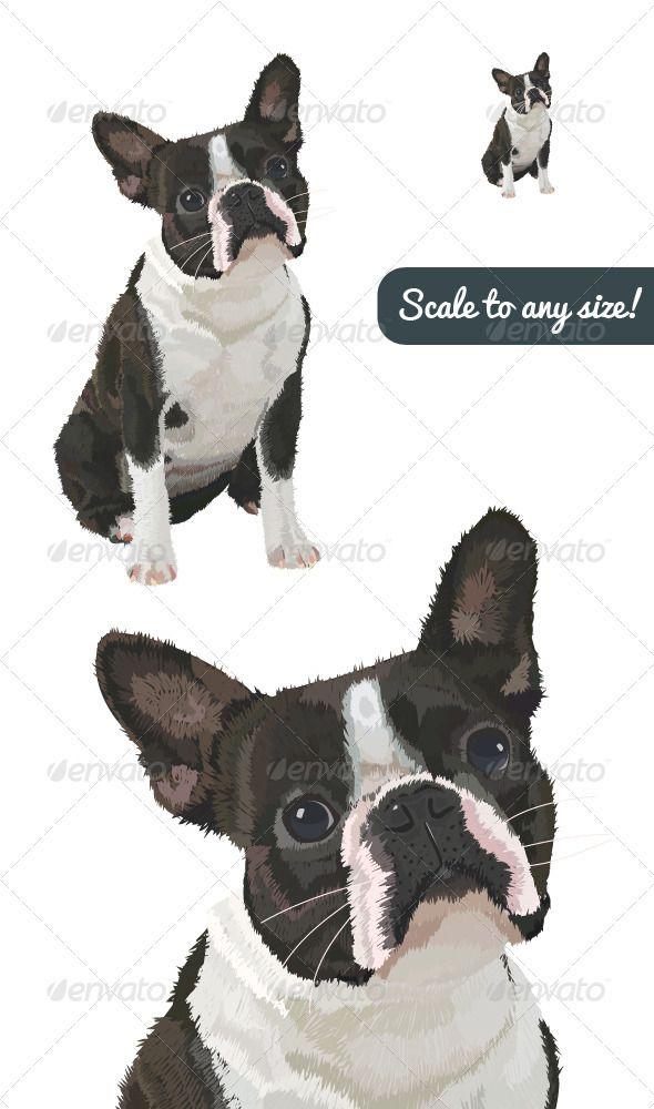 Boston Terrier Vector Boston Terrier Terrier Dogs
